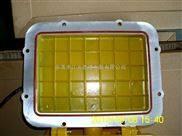 BFC8120内场防爆灯触发器电容整流器