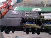 FXK8061化工厂防腐控制箱,拒酸防腐控制箱生产厂家