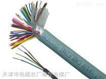 SYV-100-7 一米价格