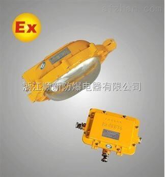 EBF602防爆平台灯生产厂家