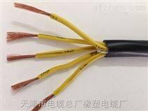 ZRC-DJFPVPR-ZRC-DJFPVPR计算机电缆|监控设备用缆