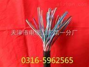 HJYVPZR/SA系统电缆  扬声器系统电缆