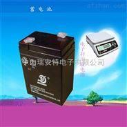 电子台秤专用电池,6V电子秤小电瓶,楼宇对讲电池厂家
