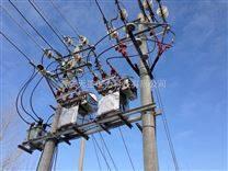 西安高压双电源互投控制保护装置 HZW8-12Y