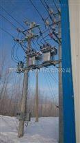 西安智能型双电源切换真空断路器HZW8-12Y图片