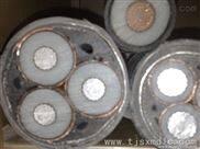 MYJV42粗钢丝铠装电力电缆MVV10*2.5报价
