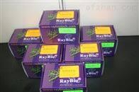 猴补体成分3试剂盒优惠促销