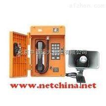 防尘防水防腐扩呼型电话机 型号:STX7-P/T-D库号:M378208