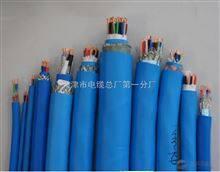 BN-IJJYVLURP32 1×2×1.5 特别电缆-没有替代产