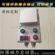 防爆漏电磁力开关箱BQC51-9A/2P