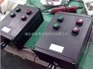 BQD8050-40A防爆防腐可逆电磁启动器 BQD8050电机正反转磁力开关
