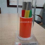 BTTZ 广州防火电缆4*16
