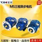 MS8022紫光MS8022三相异步电机-中研技术有限公司-清华紫光电机厂家