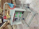 BXMD防爆照明动力户外带防雨罩防爆配电箱