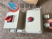 BDZ52-63/3L 防爆漏电开关