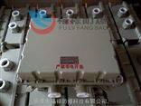 BJX-TBJX-T 等电位防爆接线盒