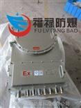 BJX-TBJX-T电池防爆保护箱