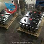 BXX/BEJ56-2/100防爆动力检修箱IIC/IIB,(不锈钢/铸铝/钢板焊接)
