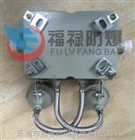 BCJ-2*10W防爆双头应急灯