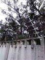 兰州工厂电子围栏哪家好