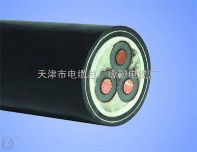YJV22-3*35铠装电力电缆 YJV22-3*50交联动力电缆