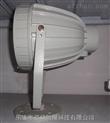 防爆投光灯BAT51-250W-L
