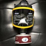 工厂防化防毒消防防护面罩