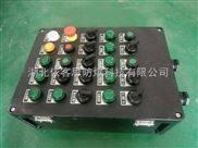 BXK56-A18K12-防爆控制箱急停按钮开关箱