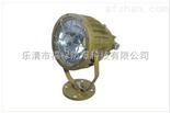FLT96防爆免维护LED投光灯(IIC)