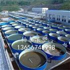 水产养殖孵化桶 养鱼养虾塑料桶