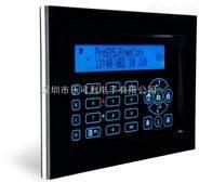 以色列RISCO 128防區LCD觸摸屏鍵盤