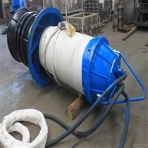 天津雪橇潛水軸流泵