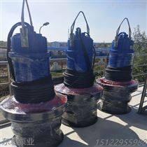 天津大流量轴流泵安装