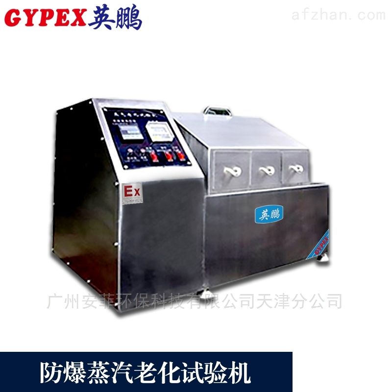 六安防爆蒸汽老化试验机