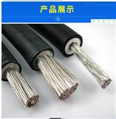 JBQ1*25引接线-1140V电机接引线