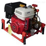 风冷柴油机手抬机动消防泵HS30PFE