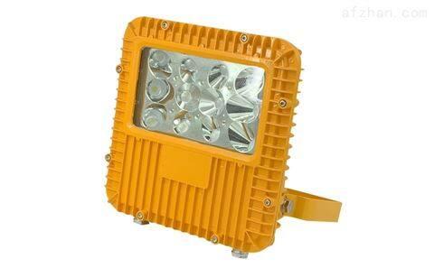 RLEEXL5330 LED防爆投光燈